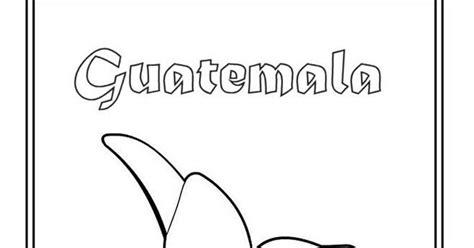 flor nacional de guatemala  colorear  pintar colorea el dibujos