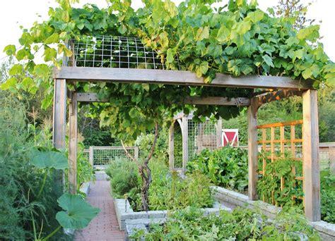 country kitchen theme ideas chic grape arbor method seattle farmhouse landscape