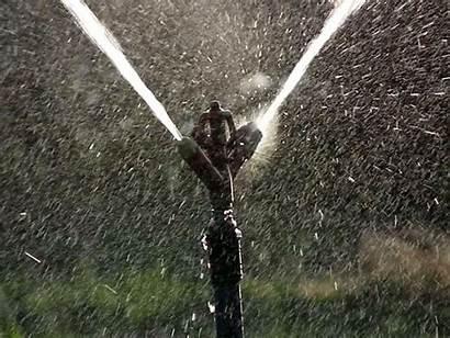 Drip Sprinkler Irrigation
