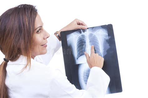 thoracic raio cavity ray examination dog cavidade organs exame
