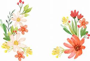 Flowers Vectors PNG Transparent Free Images | PNG Only