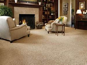 Living room carpet texture black stained hardwood coffee for Living room carpet texture