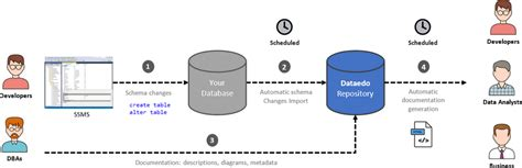 sql server document  databases  data dictionary