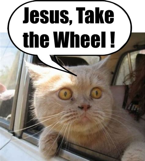Jesus Take The Wheel Meme - jesus take the wheel laugh out loud pinterest
