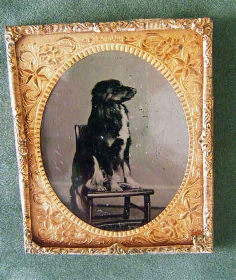 antique ls for sale sale antique dog tintype for sale antiques com classifieds