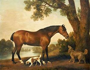 D W C  Horses - George Stubbs