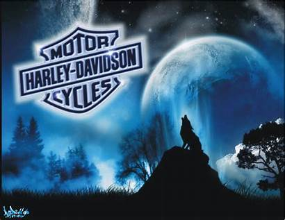 Harley Davidson Wallpapers Wolf Backgrounds Riding Bull