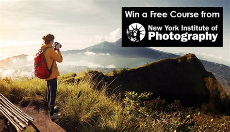Head Back To School With A Free Course From The New York