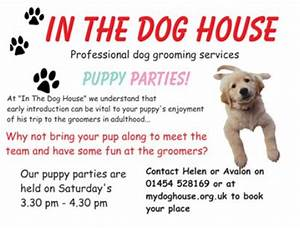 quotin the dog housequot dog grooming parlour With the dog house grooming
