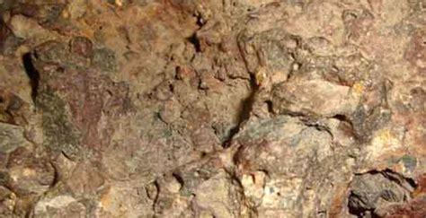 scientists claim meteorite fossils  extraterrestrial life ancient origins