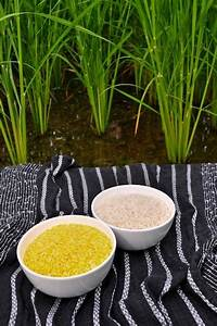 Golden Rice Opponents Should Be Held Accountable For