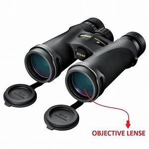 Best Hunting Binoculars For 2018