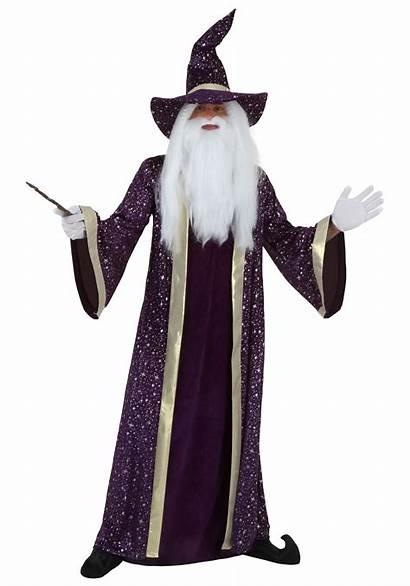 Wizard Costume Purple Adult
