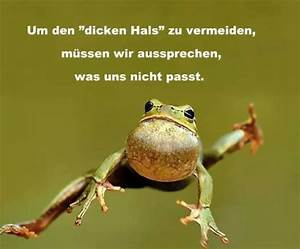Frosch Bilder Lustig : frosch spr che pinterest fr sche spr che und zitat ~ Whattoseeinmadrid.com Haus und Dekorationen