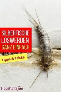 Silberfische Bekämpfen Tipps : 261 best toilette wc reinigen images on pinterest ~ Markanthonyermac.com Haus und Dekorationen