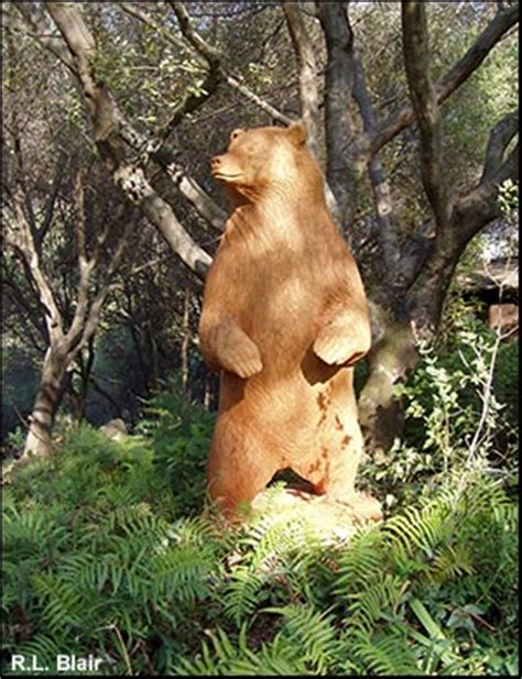 ft carved bear wood sculpture grizzly bears carving