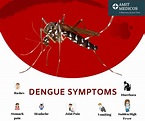 Some common Dengue symptoms and Prevention