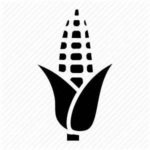 Corn, corn in husk, corn on the cob, food, sweet corn icon ...