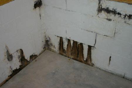 Basement Water Seepage  Part 1