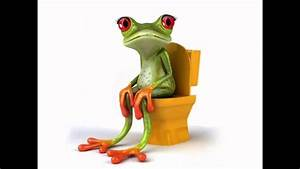 Frosch Bilder Lustig : lustige frosch witze folge 10 youtube ~ Whattoseeinmadrid.com Haus und Dekorationen