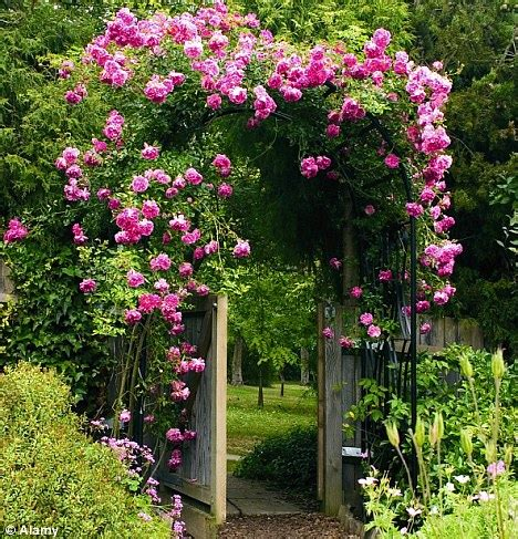 Monty Don Grow Upwards To Create A Spectacular Vertical