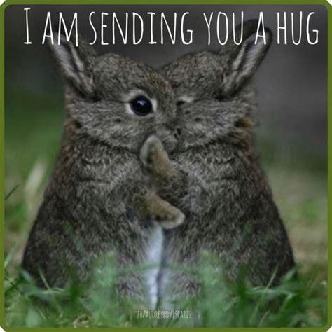 Meme Hug - hug memes best funny hug pictures