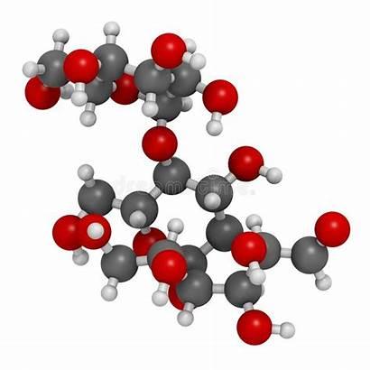Polysaccharide Hydrogen Additive Conventional Represented Rendering Molecule
