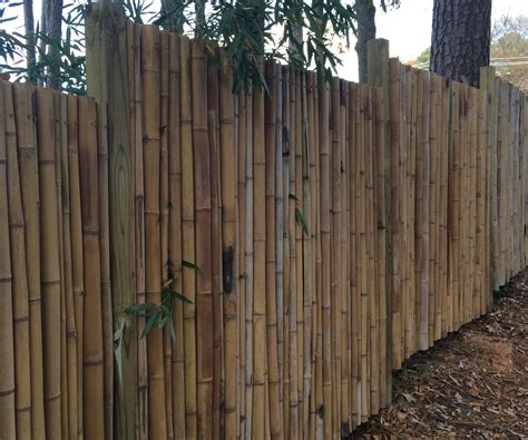 pictures of bamboo fences bamboo fence 41 steps with pictures