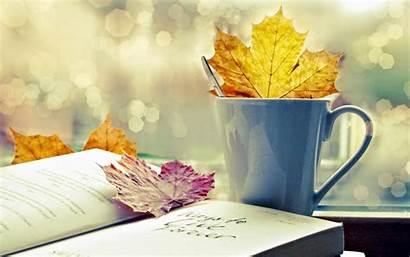 Books Table Nn Rose Nice