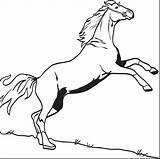 Horse Coloring Pages Printable Bucking Colorings Derby Horses Kindergarten Getdrawings Getcolorings sketch template