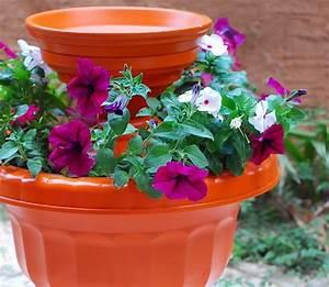 Renueva tu patio con estas ideas fáciles y baratas