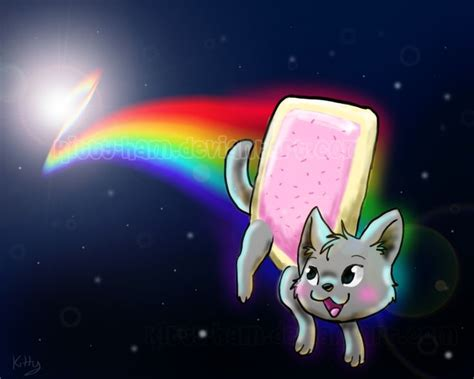 images  nyan cat  pinterest nyan nyan