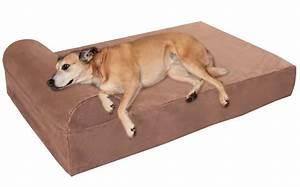 big barker 7quot pillow top orthopedic dog bed review With big barker dog bed reviews