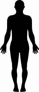 Standing Human Body Silhouette Svg Png Icon Free Download   35569