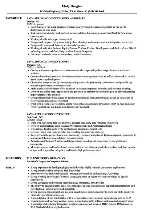 java aplication developer resume java application developer resume sles velvet