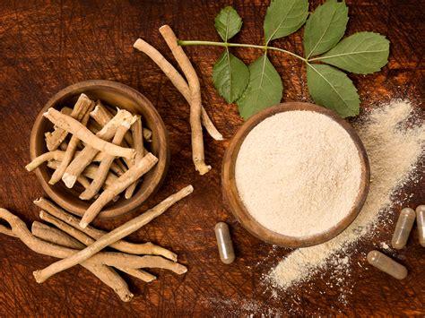 ashwagandha indian ginseng herbal remedies andrew