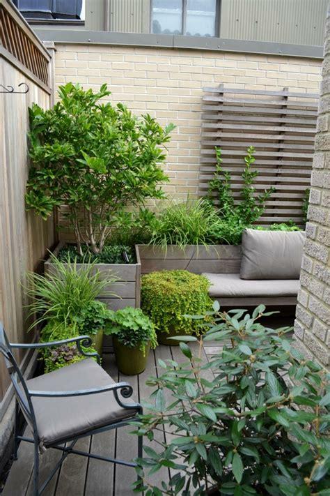 Pflanzkübel Für Balkongeländer by Gr 228 Ser Pflanzen H 252 Bsche Arten F 252 R Innenbereich Balkon