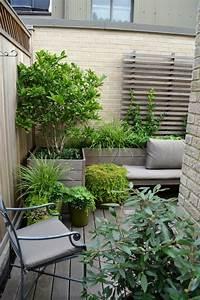 Immergrüne Pflanzen Für Balkonkasten : gr ser pflanzen h bsche arten f r innenbereich balkon ~ Markanthonyermac.com Haus und Dekorationen