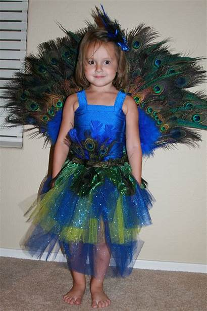 Peacock Costume Costumes Halloween Outfit Diy Feest