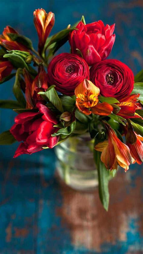 Fondos de pantalla por Red Rose Flores de primavera