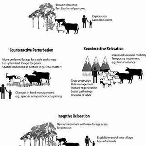 (PDF) The Pastoral Effect
