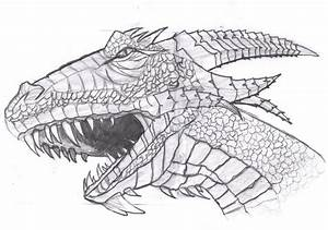 Dragon head draw by Film204 on DeviantArt