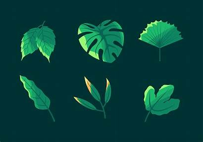 Clipart Vector Simple Leaves Leaf Plant Sceneit