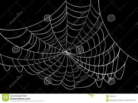 toile d araign 233 e blanche sur le noir