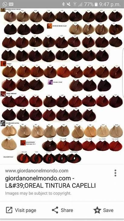 Chart Hair Loreal Colour Majirel Professional Dye