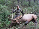 British Columbia Elk Hunts | Hunt FGS | BC Hunting Guides ...