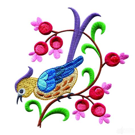 bird embroidery designs release date price and specs