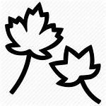 Fall Icon Leaves Autumn Season Leaf Icons