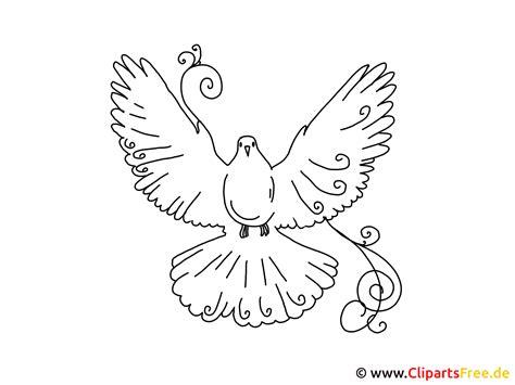bilder selber malen vorlagen vogel taube