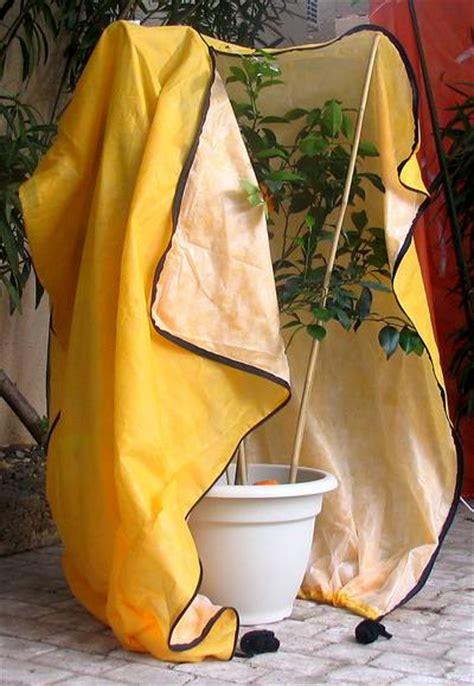 housse pour votre citronnier oranger agrumes un abri